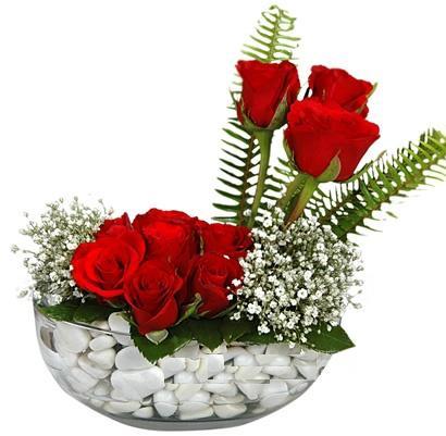 cam içerisinde 9 adet kirmizi gül  Bolu çiçek siparişi vermek