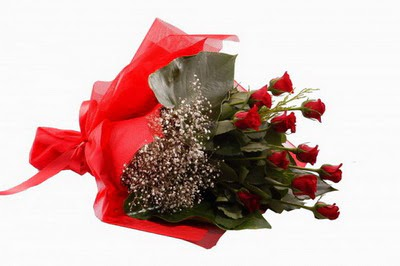 Bolu çiçek siparişi sitesi  11 adet kirmizi gül buketi çiçekçi