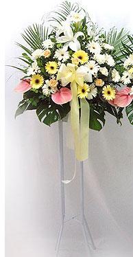 Bolu online çiçek gönderme sipariş   perförje çiçegi dügün çiçekleri