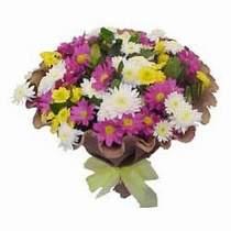 Bolu çiçekçi telefonları  Mevsim kir çiçegi demeti