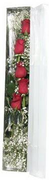 Bolu çiçek siparişi sitesi   5 adet gülden kutu güller