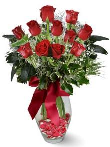9 adet gül  Bolu internetten çiçek satışı  kirmizi gül