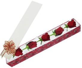 Bolu internetten çiçek satışı  kutu içerisinde 5 adet kirmizi gül