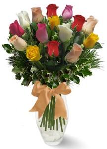 15 adet vazoda renkli gül  Bolu internetten çiçek satışı