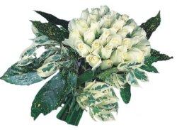Bolu internetten çiçek siparişi  9 Beyaz gül Özel kisiler için