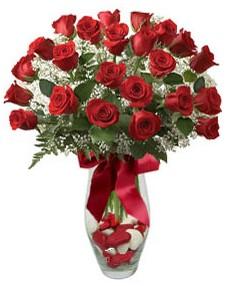 17 adet essiz kalitede kirmizi gül  Bolu çiçek mağazası , çiçekçi adresleri