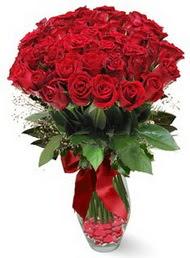 19 adet essiz kalitede kirmizi gül  Bolu 14 şubat sevgililer günü çiçek