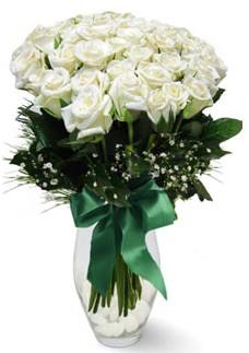 19 adet essiz kalitede beyaz gül  Bolu çiçekçiler