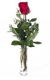 Vazo içerisinde 1 adet kirmizi gül  Bolu cicekciler , cicek siparisi