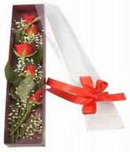 kutu içinde 5 adet kirmizi gül  Bolu internetten çiçek siparişi