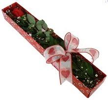 Tek kirmizi gül kutu içerisinde  Bolu güvenli kaliteli hızlı çiçek
