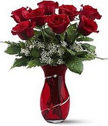 Vazo içinde 8 adet kirmizilar içinde güller  Bolu internetten çiçek siparişi