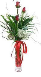 Bolu çiçek siparişi sitesi  3 adet kirmizi gül vazo içerisinde