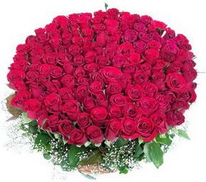Bolu online çiçekçi , çiçek siparişi  100 adet kırmızı gülden görsel buket