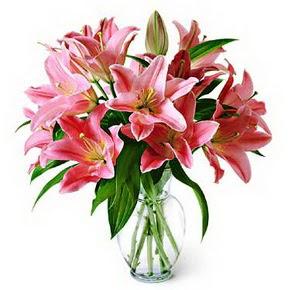 3 dal kazablanka görsel vazosu  Bolu internetten çiçek siparişi