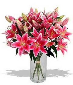 4 dal cazablanca görsel vazosu  Bolu çiçekçi mağazası
