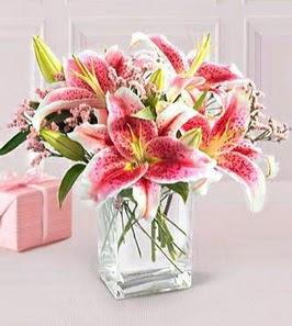 2 dal kazablanka görsel vazosu  Bolu çiçek siparişi sitesi