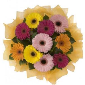 Bolu İnternetten çiçek siparişi  11 adet karışık gerbera çiçeği buketi