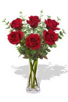 Bolu çiçekçi mağazası  6 kırmızı gül vazosu