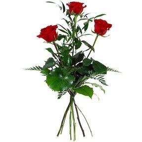 Bolu uluslararası çiçek gönderme  3 adet kırmızı gülden buket