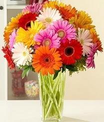 Bolu çiçek servisi , çiçekçi adresleri  15 adet gerbera çiçek vazosu