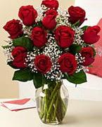 Sevgilime hediye 9 adet 1.ci kalite gül  Bolu anneler günü çiçek yolla