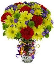 En güzel hediye karışık mevsim çiçeği  Bolu hediye çiçek yolla