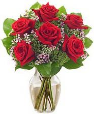 Kız arkadaşıma hediye 6 kırmızı gül  Bolu internetten çiçek siparişi