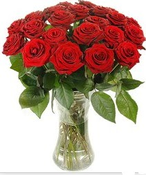 Bolu çiçek mağazası , çiçekçi adresleri  Vazoda 15 adet kırmızı gül tanzimi