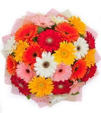 15 adet renkli gerbera buketi  Bolu yurtiçi ve yurtdışı çiçek siparişi