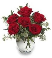 Vazo içerisinde 5 adet kırmızı gül  Bolu çiçekçi mağazası
