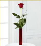 Vazo içerisinde 1 adet kırmızı gül  Bolu internetten çiçek siparişi