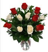Vazo içerisinde 6 kırmızı 6 beyaz gül  Bolu hediye çiçek yolla