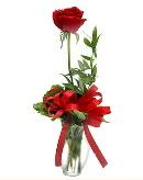 vazo içerisinde 1 adet kırmızı gül  Bolu çiçekçi telefonları