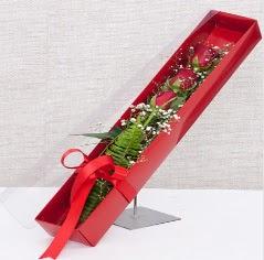 Kutu içerisinde 3 adet kırmızı gül  Bolu online çiçek gönderme sipariş