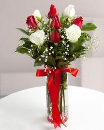 5 kırmızı 4 beyaz gül vazoda  Bolu cicekciler , cicek siparisi