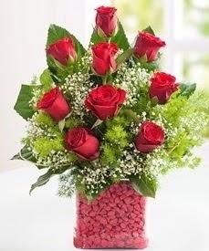 Cam içerisinde 9 adet kırmızı gül  Bolu internetten çiçek satışı