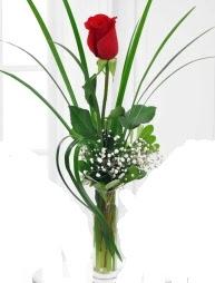 Cam içerisinde 1 kırmızı gül  Bolu çiçek gönderme sitemiz güvenlidir