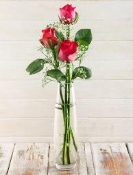 Cam içerisinde 3 kırmızı gül  Bolu çiçek satışı