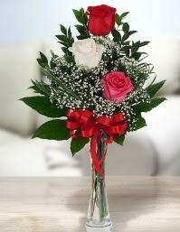 Camda 2 kırmızı 1 beyaz gül  Bolu ucuz çiçek gönder