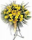 Bolu yurtiçi ve yurtdışı çiçek siparişi  Sari kazablanka Ferforje