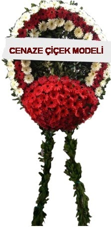 cenaze çelenk çiçeği  Bolu çiçek online çiçek siparişi