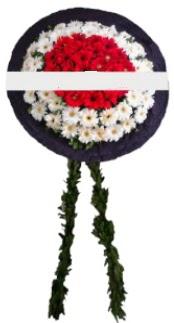 mozele çiçeği  Bolu hediye sevgilime hediye çiçek