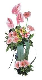 Bolu güvenli kaliteli hızlı çiçek  Pembe Antoryum Harikalar Rüyasi
