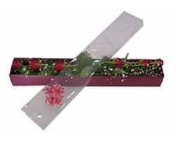 Bolu anneler günü çiçek yolla   6 adet kirmizi gül kutu içinde