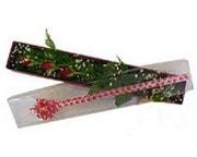 Bolu hediye çiçek yolla  3 adet gül.kutu yaldizlidir.