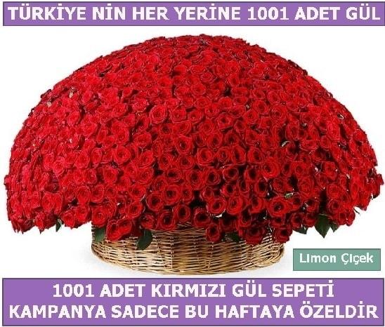 1001 Adet kırmızı gül Bu haftaya özel  Bolu İnternetten çiçek siparişi