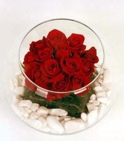 Cam fanusta 11 adet kırmızı gül  Bolu çiçek gönderme