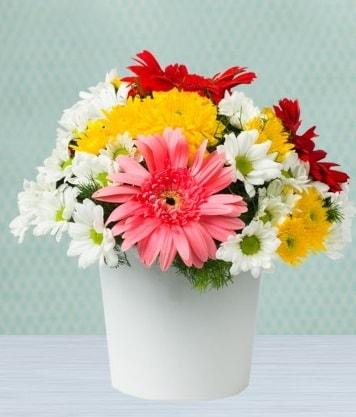 Seramik Vazoda Gelbera ve Papatya  Bolu çiçek gönderme