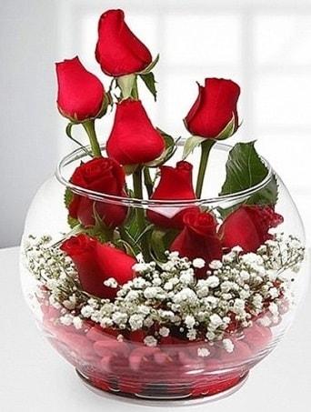Kırmızı Mutluluk fanusta 9 kırmızı gül  Bolu çiçek siparişi sitesi